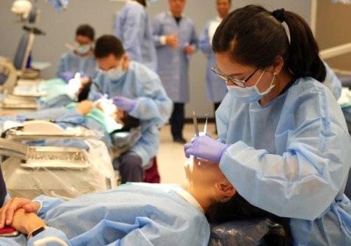 NEBDN National Diploma in Dental Nursing